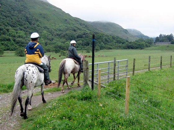 Horse Riding - Lerigoligan