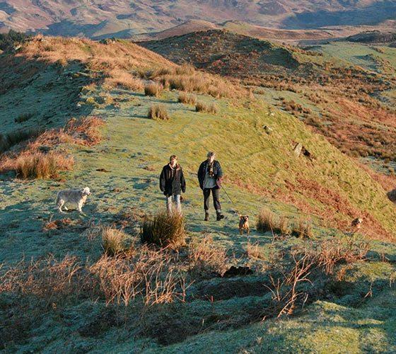 Walk with dogs - Lerigoligan